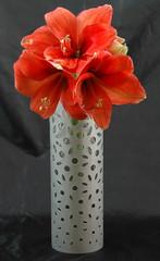 Festival Vases